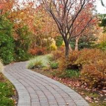 autumn-pathway_GyWaBIuu_thumb