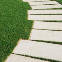 serpentine-pathway-stones-on-a-park-lawn-concept_M1d_OC6d_thumb