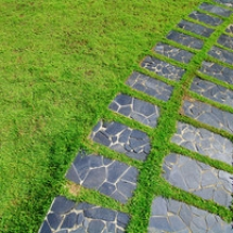 the-stone-block-walk-path-in-the-park-with-green-grass-background_Hw4RJd3Gg_thumb